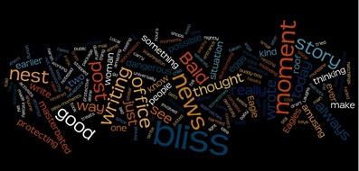 Writing Bliss word cloud