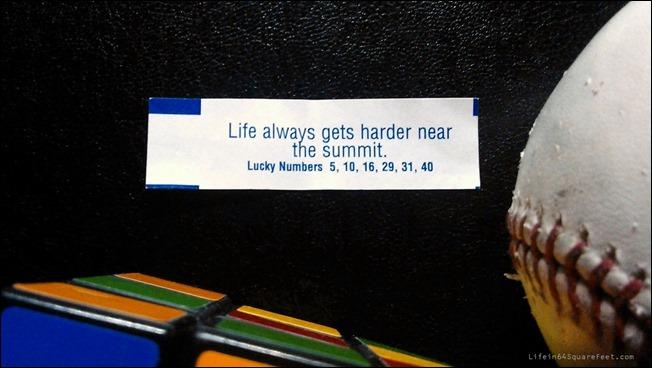 L64-lifegetsharder-WP1