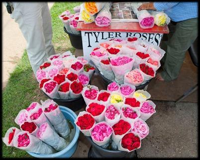 Tyler Roses