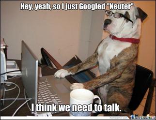neuter-lets talk