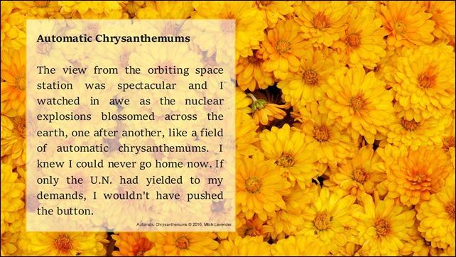 Automatic Chrysanthemums