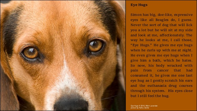 Eye-Hugs-wp