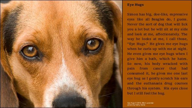 Eye-Hugs-wp.jpg